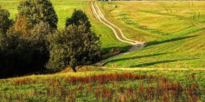Obrazek wyróżniający - Rolniku nie rozjeżdżaj dróg