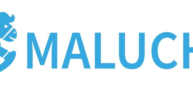Logo programu Maluch +